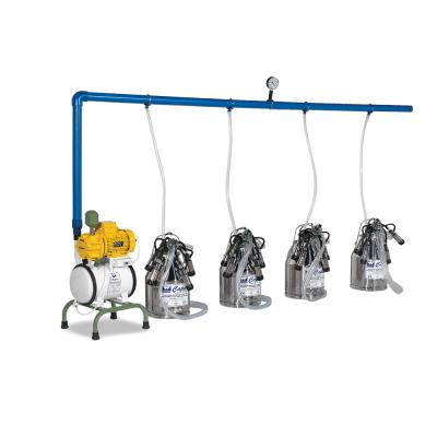 Dört Üniteli Dört Kovalı Yarı Sabit Süt Sağım Makinesi-C044